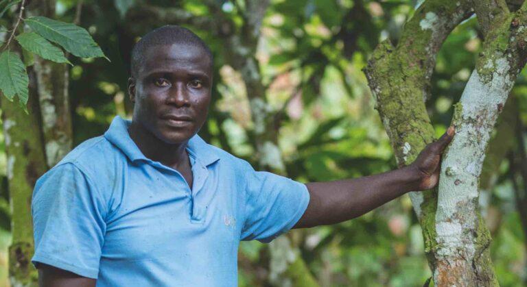 En la selva. La historia de Karim, el productor de cacao africano.